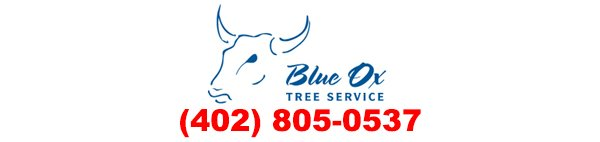 Blue Ox Trees | Tree Care in Lincoln, Nebraska